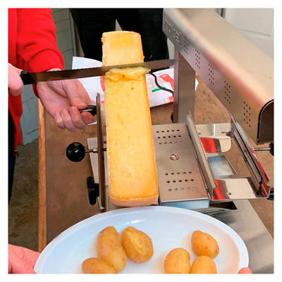 rotel Raclettegerät Tradition